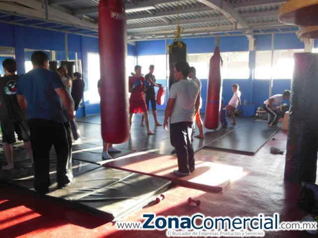 Box en X-Treme Baja Fitness