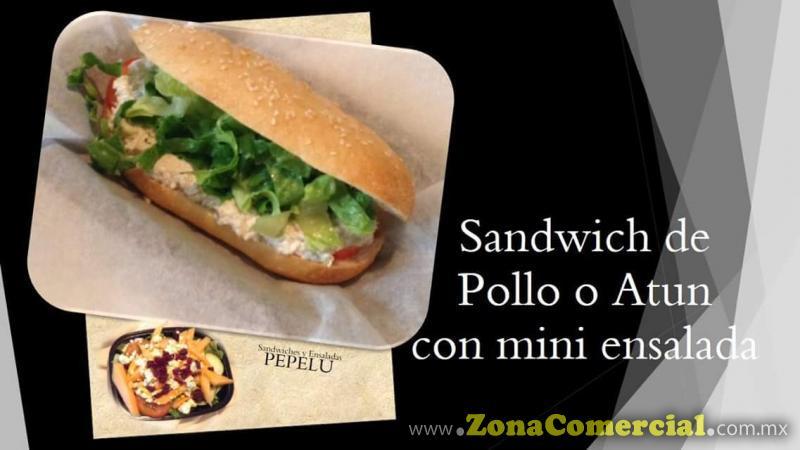 Sandwich de Pollo o Atún con mini ensalada.