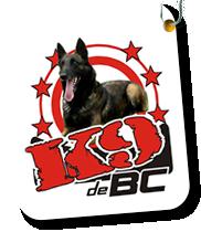 K9-de-BC---Adiestramiento-Canino.