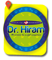 Dr.-Hiram-Hospital-Veterinario